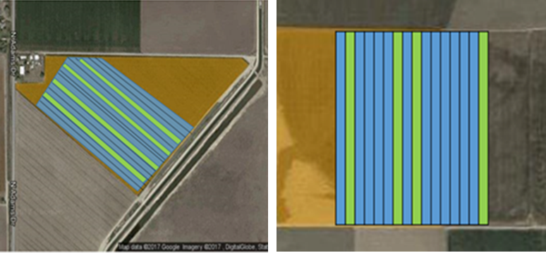 Birdseye view of furrow irrigated Field #1 (left) and drip irrigated Field #2 (right). Plant samples were collected from the green highlighted plots. Madras, Oregon. © 2018 Google LLC, used with permission.