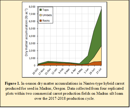 Figure 1. In-season dry matter accumulations in Nantes-type hybrid carrot produced for seed in Madras, Oregon. Data collected from four replicated plots within two commercial carrot production fields on Madras silt loam over the 2017-2018 production cycle.