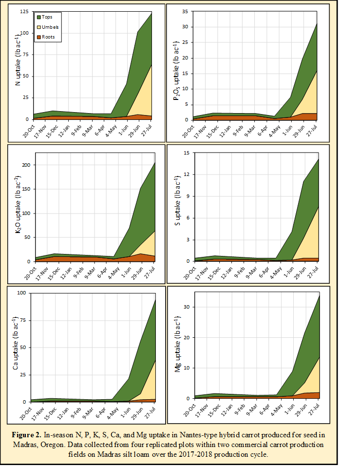 Figure 2. In-season N, P, K, S, Ca, and Mg uptake in Nantes-type hybrid carrot produced for seed in Madras, Oregon. Data collected from four replicated plots within two commercial carrot production fields on Madras silt loam over the 2017-2018 production cycle.